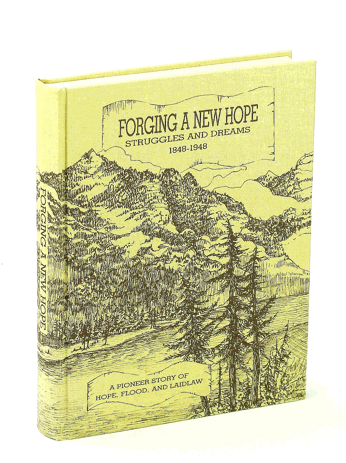 Image for Forging a New Hope: Struggles and Dreams 1848-1948- A Pioneer Story of Hope, Flood and Laidlaw